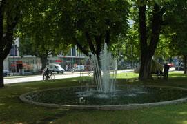 foto van een park in de schaduw