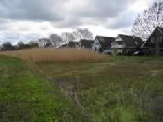 helyofytenfilter in woonwijk