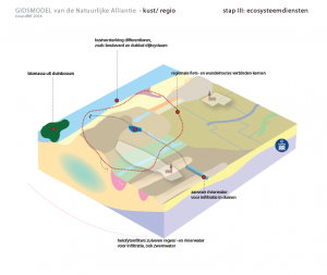 kust III regio ecosysteemdiensten