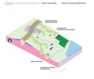 regio veenweide ecosysteemdiensten